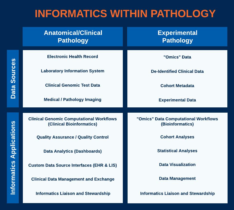 Informatics in Pathology